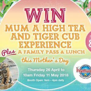 WIN Mum a High Tea & Tiger Cub Experience