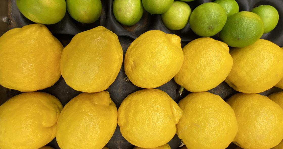 Landies Fruit World
